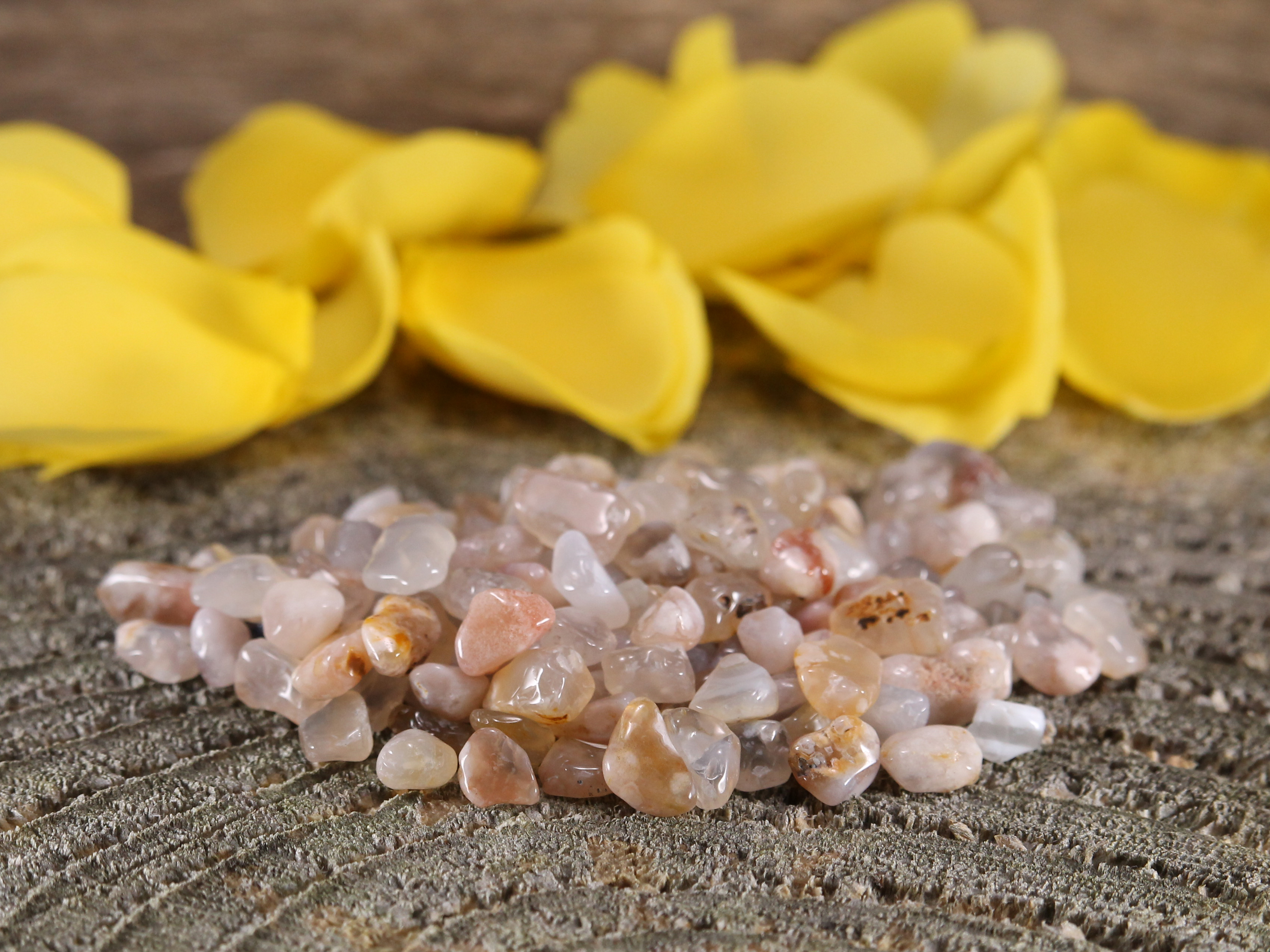 https://rockyroadminerals.com/flower-agate-chips-crystal-for-self-confidence-and-motivation-1-x-50g-bag/